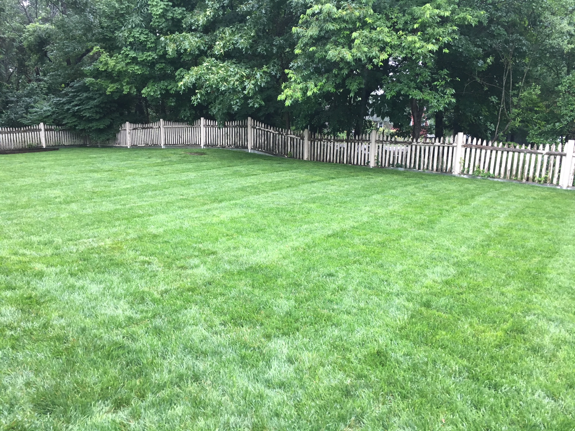 Sod Installations Do S And Not Lana Landscaping Inc